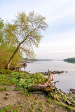 Vista do rio de Dniper na manhã Foto de Stock