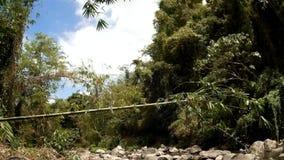 Vista do rio rochoso frio e limpo da água natural, repleto com vegetação natural vídeos de arquivo