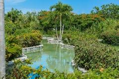 Vista do rio tropical home do jardim com vário pl Imagens de Stock Royalty Free