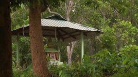 Vista do túmulo da floresta de um budista, Myanmar filme