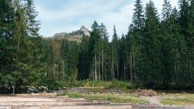 Vista do vale de Koscielisko em Tatras polonês Fotos de Stock
