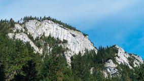 Vista do vale de Koscielisko em Tatras polonês Imagem de Stock Royalty Free