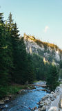Vista do vale de Koscielisko em Tatras polonês Imagem de Stock