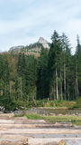 Vista do vale de Koscielisko em Tatras polonês Fotografia de Stock Royalty Free