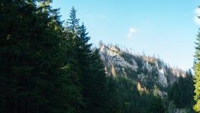 Vista do vale de Koscielisko em Tatras polonês Imagens de Stock