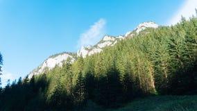 Vista do vale de Koscielisko em Tatras polonês Imagens de Stock Royalty Free