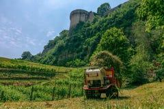 Vista do vinhedo e da parede do castelo fotos de stock