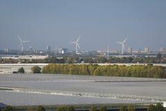 Vista dos moinhos de vento e das estufas na parte ocidental dos Países Baixos, perto de Rotterdam e de Haia imagens de stock
