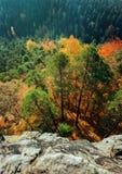Vista dos penhascos na floresta do outono imagem de stock