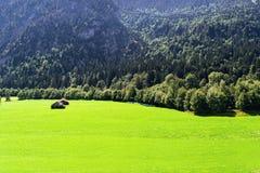Vista dos prados alpinos bem arrumados com os anexo contra o contexto das montanhas fotos de stock