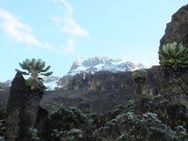 Vista durante l'ascesa di Kilimanjaro Fotografia Stock Libera da Diritti