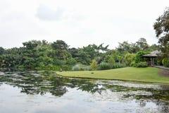 Vista e fiume del parco fotografia stock