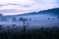 Vista em Adrspach, CZ Fotos de Stock