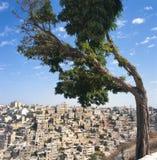 Vista em Amman Imagens de Stock