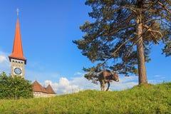 Vista em Goldau Fotos de Stock Royalty Free