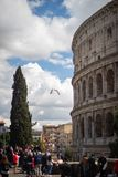 Vista em grande Roman Colosseum, coliseu, Colosseo, igualmente conhecido como Flavian Amphitheatre roma Italy europa imagens de stock royalty free