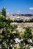 Vista em Jerusalem da montanha verde-oliva Foto de Stock Royalty Free