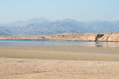 Vista em montanhas em Ras Mohamed, Egito, Sinai sul foto de stock royalty free