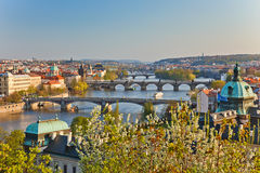 Vista em pontes de Praga Fotos de Stock