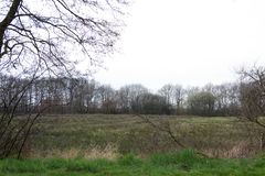 Vista em um campo natural silvestre no emsland Alemanha do rhede foto de stock royalty free