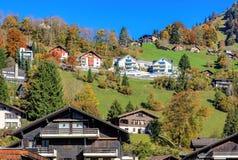 Vista a Engelberg, Svizzera Fotografia Stock Libera da Diritti