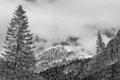 Vista enorme delle alpi della montagna di Pordoi delle dolomia Fotografia Stock Libera da Diritti