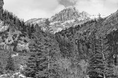 Vista enorme delle alpi della montagna di Pordoi delle dolomia Fotografia Stock