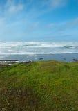 Vista erbosa fuori al mare Immagini Stock
