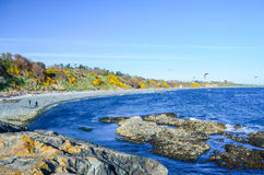 Vista escénica de la bahía de herradura cerca del parque de Beacon Hill Imágenes de archivo libres de regalías