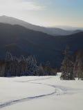 Vista escénica de la cuesta de montaña con un tracce del snowboardi Foto de archivo libre de regalías