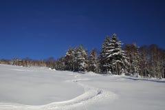 Vista escénica de la cuesta del esquí con un rastro del esquí en piste no preparado Fotografía de archivo