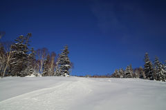 Vista escénica de la cuesta del esquí con un rastro del esquí en piste no preparado Foto de archivo