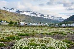 Vista escénica de la pequeña ciudad Seydisfjordur en Islandia del este en verano con nieve fotos de archivo libres de regalías