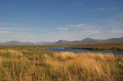 Vista escénica de la tundra y del río de la montaña Imagen de archivo