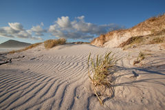 Dunas de arena onduladas Foto de archivo libre de regalías