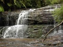 Vista escénica de una cascada en el bosque Foto de archivo