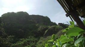 Vista escénica del alto acantilado en la isla tropical Bali Indonesia almacen de metraje de vídeo