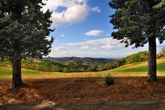 Vista escénica del prado   Imagen de archivo libre de regalías