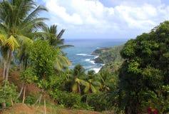 Vista escénica a la costa costa de Océano Atlántico, Dominica, islas caribeñas Fotografía de archivo