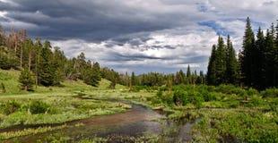 Vista escénico del parque nacional de la montaña rocosa Imágenes de archivo libres de regalías