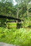 Vista escandinava verde brilhante bonita ao lado do rio Foto de Stock