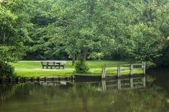 Vista escandinava verde brilhante bonita ao lado do rio Fotos de Stock