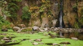 Vista estática de la cascada pintoresca almacen de metraje de vídeo
