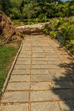 Vista estreita do jardim verde com grama, árvores, plantas, madeiras cortadas da árvore e caminho, Chennai, Tamil Nadu, Índia, o  Imagem de Stock