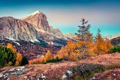 Vista fantástica da parte superior da passagem de Falzarego com montanha de Lagazuoi fotos de stock royalty free