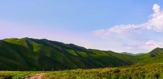 Vista favolosa delle montagne, natura di stupore, estate nelle montagne fotografie stock libere da diritti