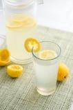 Vista fresca di verticale della limonata immagine stock libera da diritti