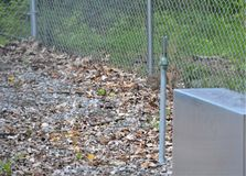 Vista frontal lateral de un conejo en el lado de una cerca de la alambrada imágenes de archivo libres de regalías