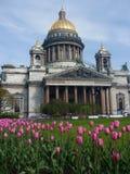 Vista frontale della cattedrale della st Isaac \ 'di s, st Peterburg in primavera Immagini Stock