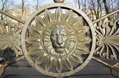 Vista frontale della testa del leone nel telaio rotondo decorazione Fotografia Stock Libera da Diritti
